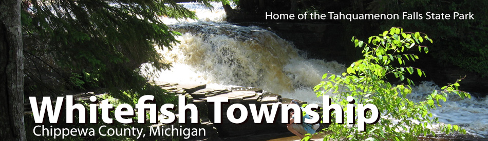 Tahquamenon Lower Falls